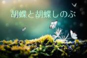 胡蝶トップ画像
